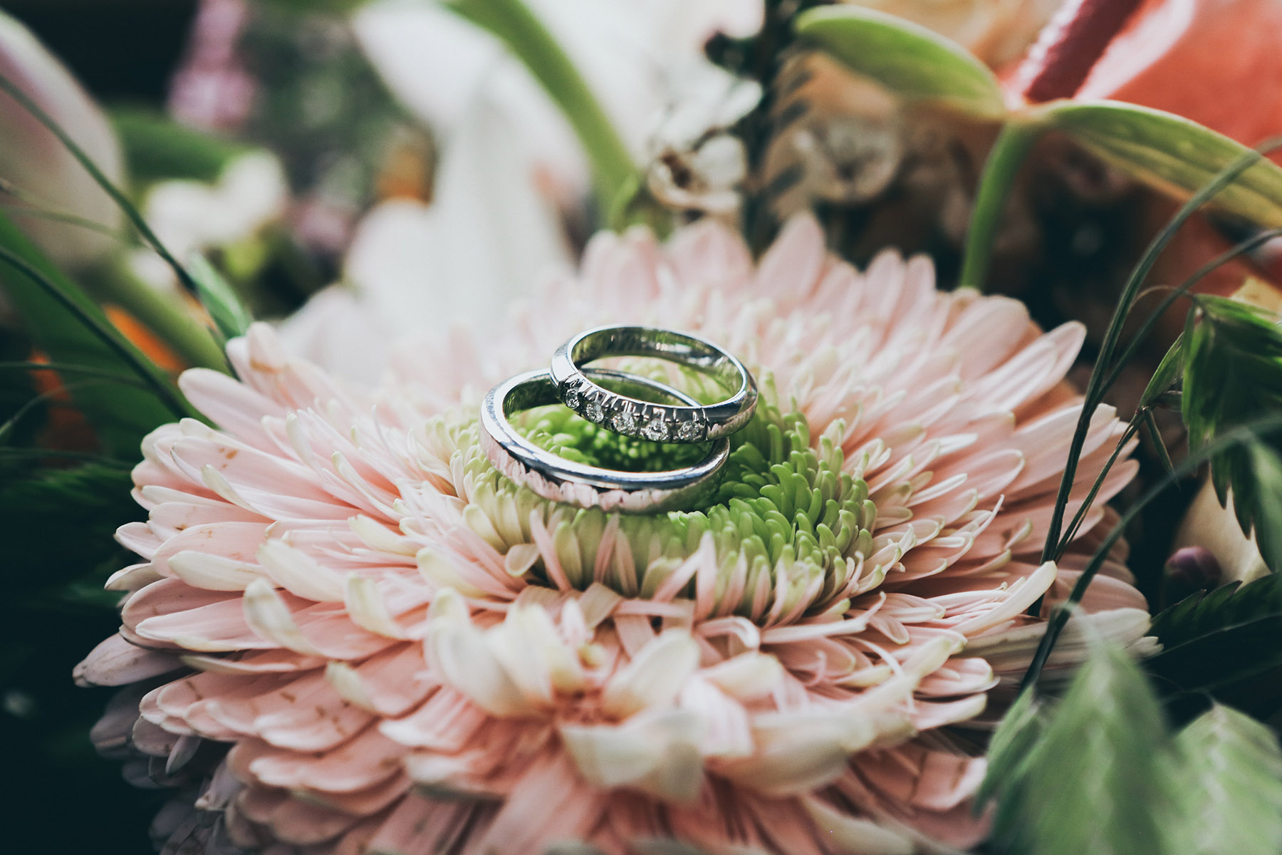 Wedding rings on top of a flower